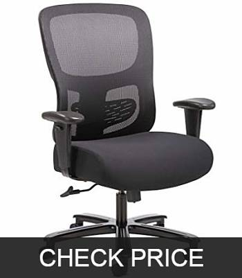 Sadie Big and Tall plus size Office Computer Chair