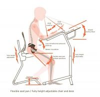 Features of a Good Ergonomic Office Chairs