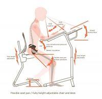Ergonomically-Correct-Chair