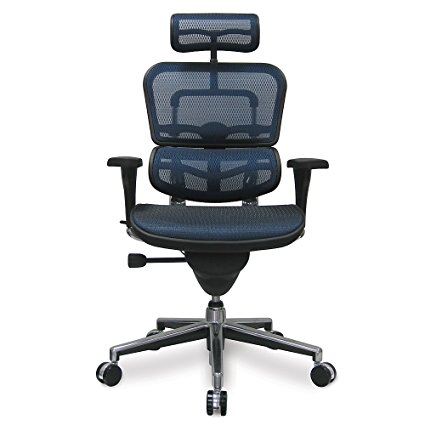 Eurotech Ergohuman Mesh Office Chair