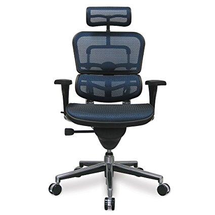 Eurotech Ergohuman Mesh Office Chair