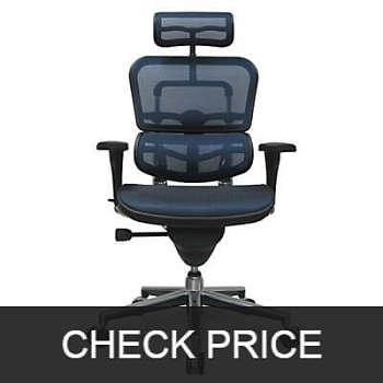 Ergohuman-High-Back-Swivel-Chair-with-Headrest